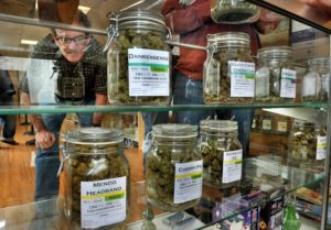 Massachusetts Pot Shops Begin Selling Recreational Marijuana Today