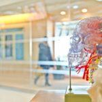 March: Brain Injury Awareness Month